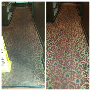 Commercial Carpet Cleaning Novi MI - Greener Method - buca