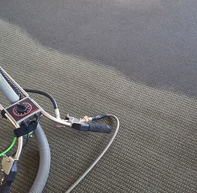 Home Carpet Cleaning Services Ann Arbor MI - Greener Method - 1