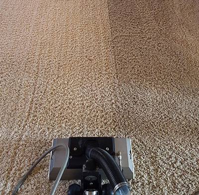 Carpet and Upholstery Cleaning Service Commerce Township