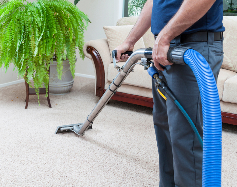 Carpet Cleaners Bloomfield MI