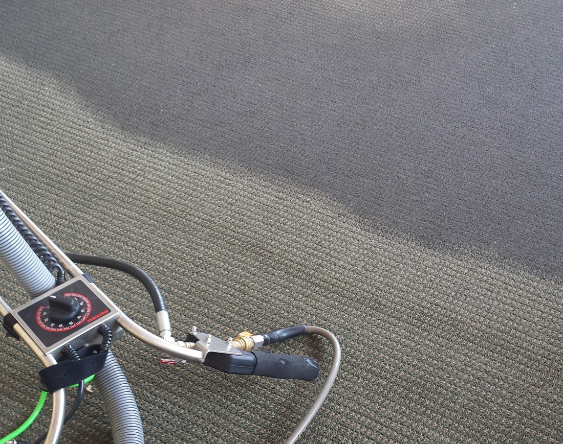 Home Carpet Cleaning Livonia MI - Upholstery, Furniture Cleaning | Greener Method - stained