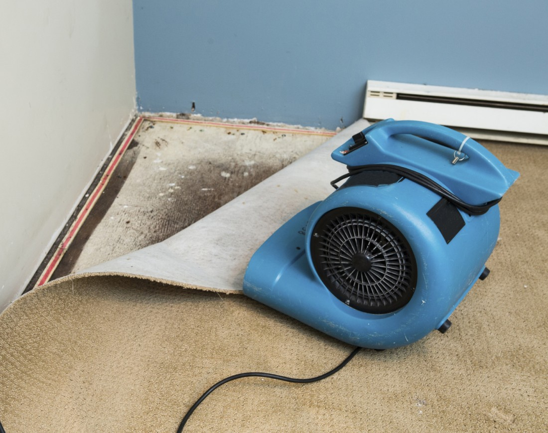 24/7 Water Extraction Livonia MI - Carpet Cleaning, Flood Damage Restoration | Greener Method - flooddry
